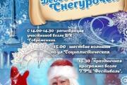 Приглашаем родителей, детей на Парад Дед Морозов и Снегурочек!